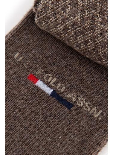 U.S. Polo Assn. Çorap Kahve